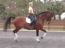 Available on DVD No.5<br>Betsy Steiner<br> Riding & Lecturing<br> Feliki<br>KWPN<br> 19 yrs. old Mare<br> Training: Grand Prix<br> Duration: 32 minutes